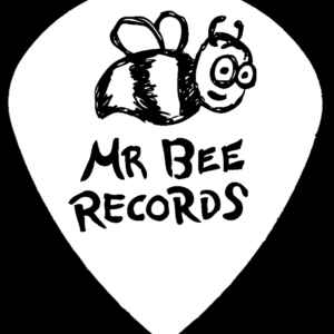 Pick Front with 'Mr Bee Records'